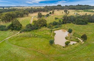 Lot 5, 301 Old Drummond Road, Taradale VIC 3447