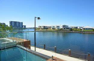 Picture of 48 Reflection Crescent, Birtinya QLD 4575
