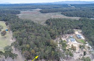Picture of Lot 1 Broulee Road, Broulee NSW 2537