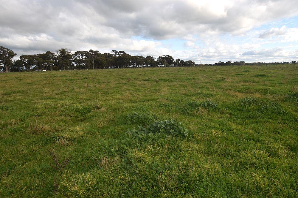 2, 3385 Midland Highway, Stanhope VIC 3623, Image 0