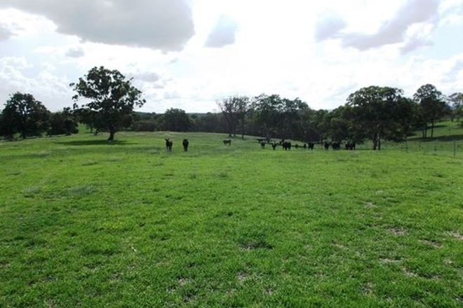 Picture of Lot 24 (5477) Mount Lindesay Road, LISTON NSW 2372