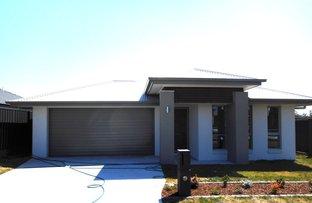 4 Arrowfield Street, Cliftleigh NSW 2321