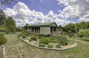 Picture of 31 Saleyards Lane, Braidwood NSW 2622