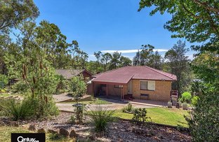 Picture of 13 Boomerang Road, Springwood NSW 2777