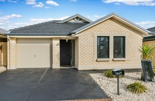 24 Tidal Street, Seaford Meadows SA 5169