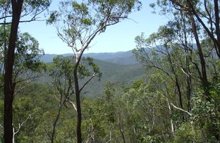 Picture of Bonner Road, Rivertree NSW 2372