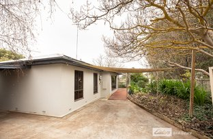 Picture of 18 LOCHIEL AVENUE, Naracoorte SA 5271
