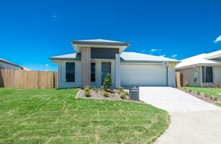 24 Wedge Tail Court, Griffin QLD 4503