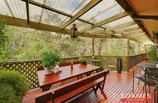 Picture of 7 Paroo Place, Hornsby Heights NSW 2077