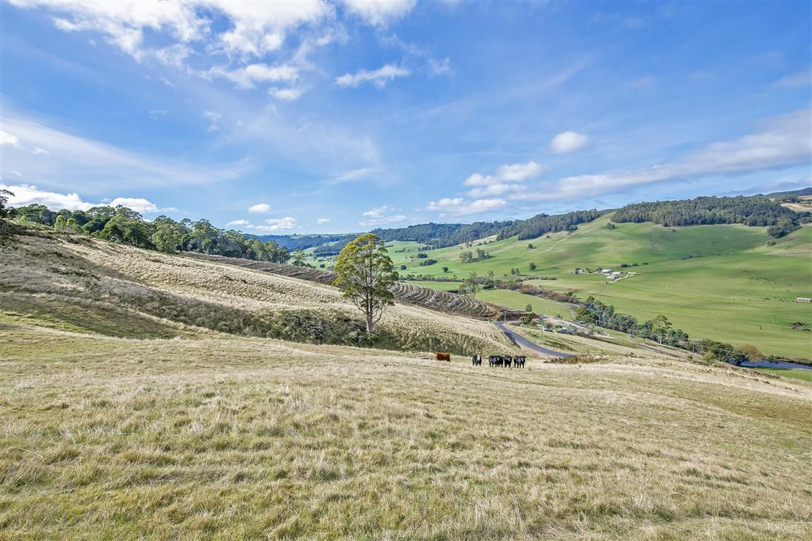 1689 South Riana Road, Gunns Plains TAS 7315, Image 2