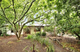 Picture of 6 Barkers Road, Chum Creek VIC 3777