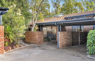Picture of 6/303 Portrush Road, Norwood SA 5067