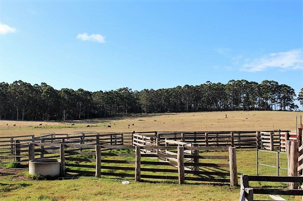 706 Valley of the Giants Road, Denmark WA 6333, Image 0