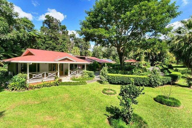 Picture of 17 Warril Drive, KURANDA QLD 4881