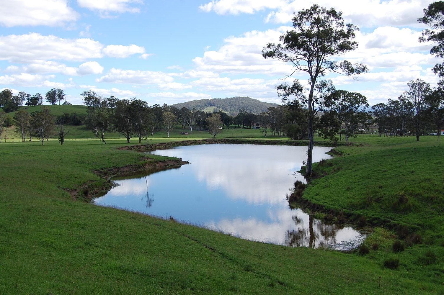 'Green Park' Pine Street, Mallanganee NSW 2469, Image 1