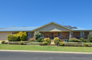 Picture of 6 Settlers Place, Young NSW 2594
