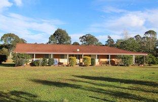 Taree NSW 2430