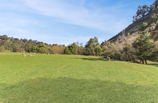 Picture of 38 Sawpit Gully Road, Bridge Creek VIC 3723