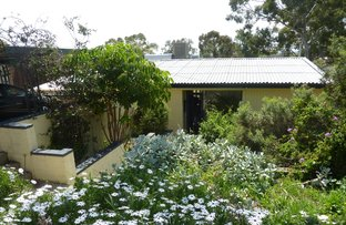 Picture of 28 Barretts Road, Torrens Park SA 5062