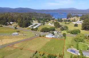 Picture of Lot 1 Tramway Street, Port Arthur TAS 7182