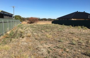 Picture of Lot 104 JS McEWIN Terrace, Blyth SA 5462