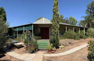 Picture of 107 Newcastle Street, York WA 6302