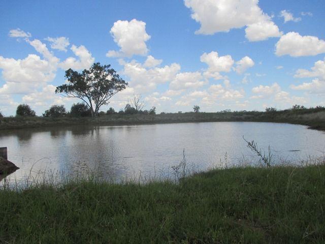 385 SWANS ROAD, Wallumbilla QLD 4428, Image 1