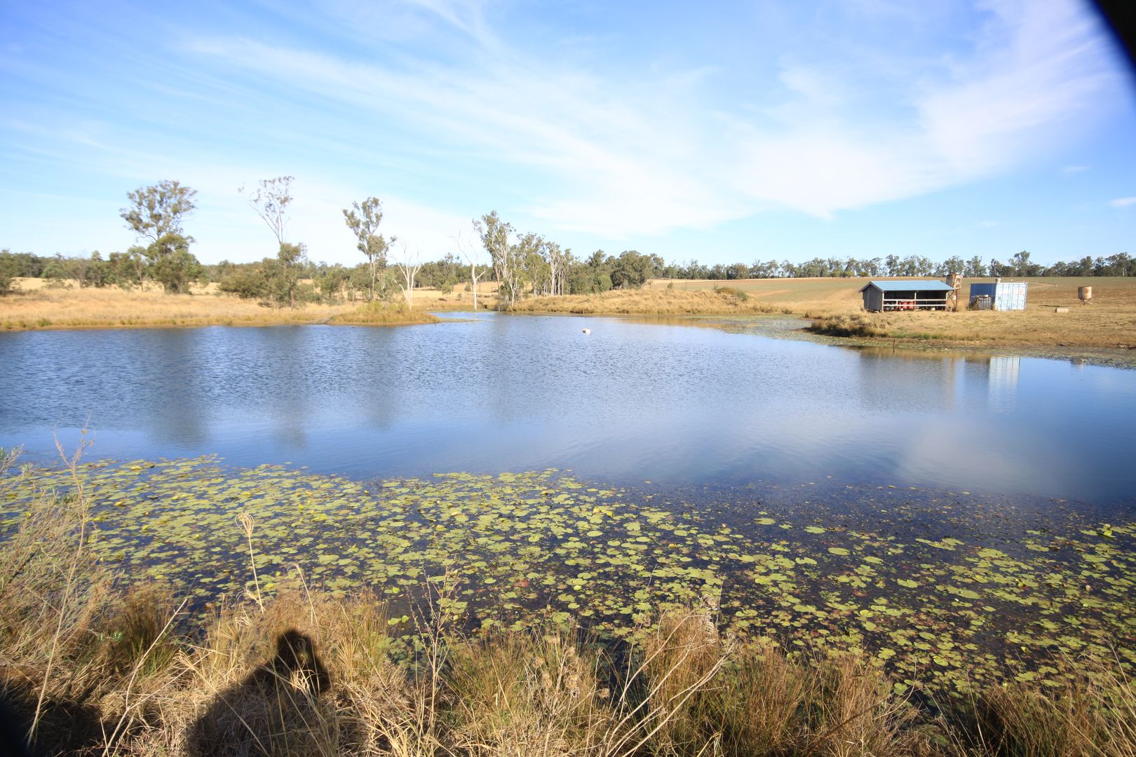 Cnr Kumbia Minmore Road & Wooden Hut Road, Wattle Grove QLD 4610, Image 0