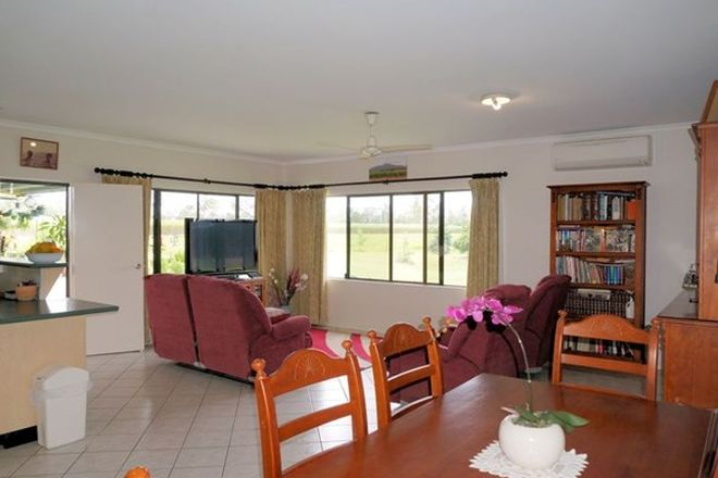 Picture of 560 Rockingham Road, EURAMO QLD 4854