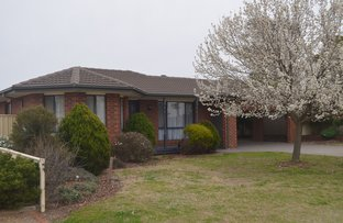 Picture of 8 Harding Court, Numurkah VIC 3636