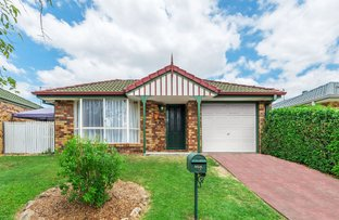 Picture of 5 Turquoise Place, Wavell Heights QLD 4012