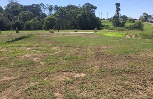 Picture of Lot 503 Huntingdale Park Estate, Berry NSW 2535