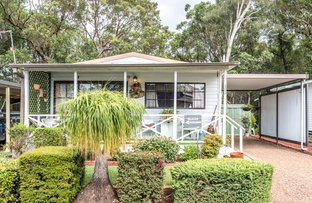 Picture of 189 Lady Penrhyn Place, Kincumber NSW 2251