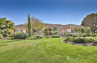Picture of 3 Snowy Avenue, Red Cliffs VIC 3496