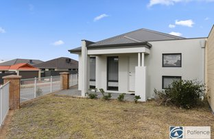 Picture of 51 Splendens Avenue, Banksia Grove WA 6031