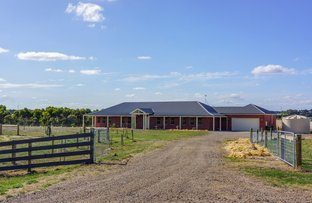 Picture of 260 Ondit Road, Winchelsea VIC 3241