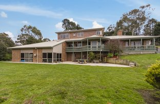 Picture of 172 Spillers Road, Macclesfield VIC 3782
