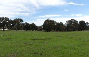 Veterans Road, Goulburn NSW 2580