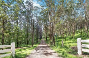 Picture of 84 Palmtree Road, Ravensbourne QLD 4352