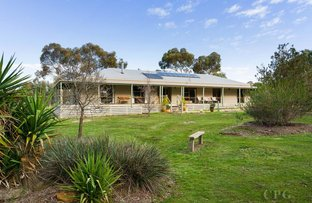 Picture of 54 Pitts Lane, Welshmans Reef VIC 3462