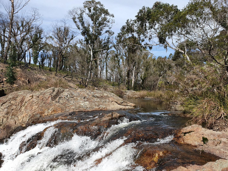52 McRaes Road, Monga via, Braidwood NSW 2622, Image 0