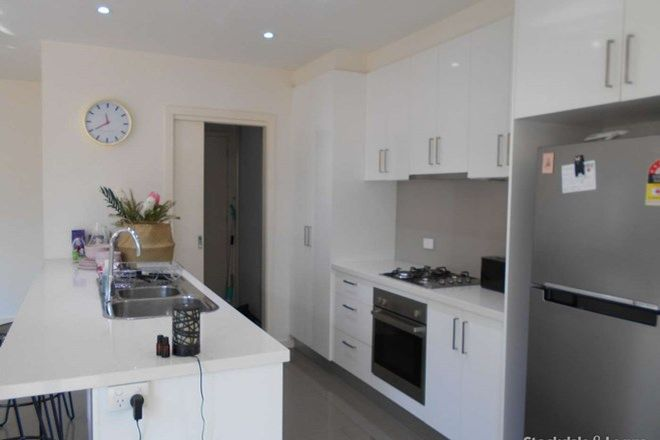 Picture of 14 Nedlands  Drive, HIGHTON VIC 3216