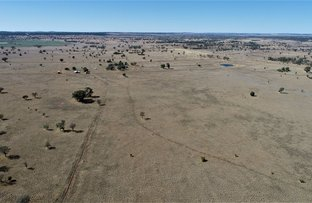 "Picture of . ""East Lynne"", Mitchell QLD 4465"