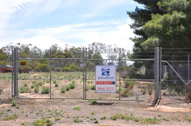 Section 423 Curtis Road, Waikerie SA 5330, Image 2