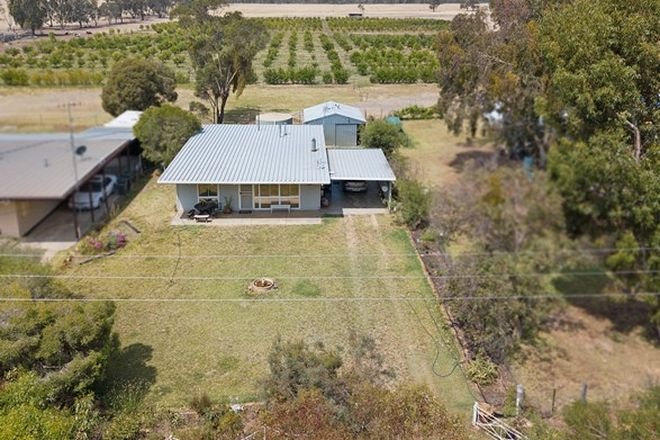 Picture of 460 Moira Lakes Road, BARMAH VIC 3639
