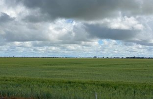 Picture of Warracknabeal VIC 3393