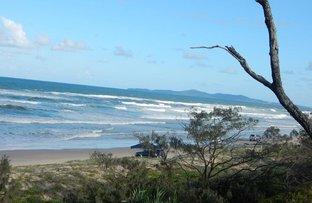 Picture of 16 The Esplanade, Noosa North Shore QLD 4565