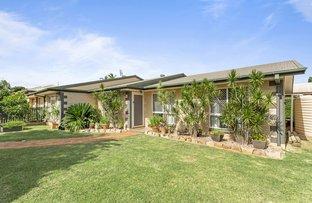 Picture of 28 Silky Oak Drive, Glenvale QLD 4350
