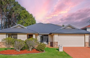 Picture of 17 Hastings Close, Calamvale QLD 4116