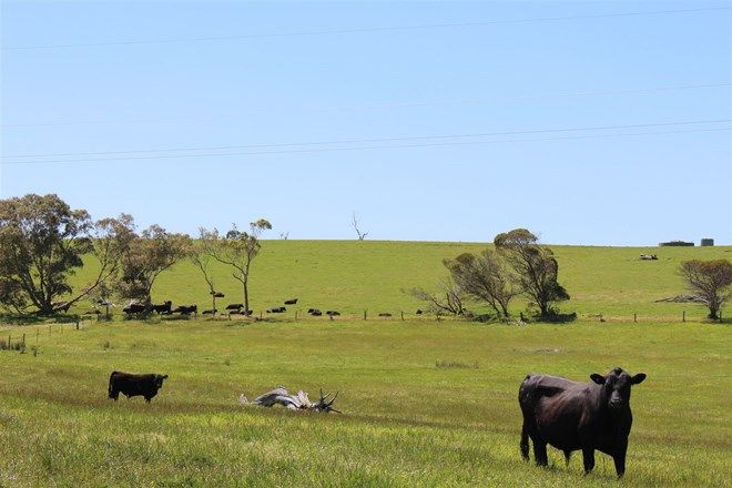 Picture of ' Monteray Farms ', GREEN VALLEY WA 6330
